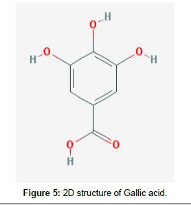 Drug-Development-Research-Gallic-acid