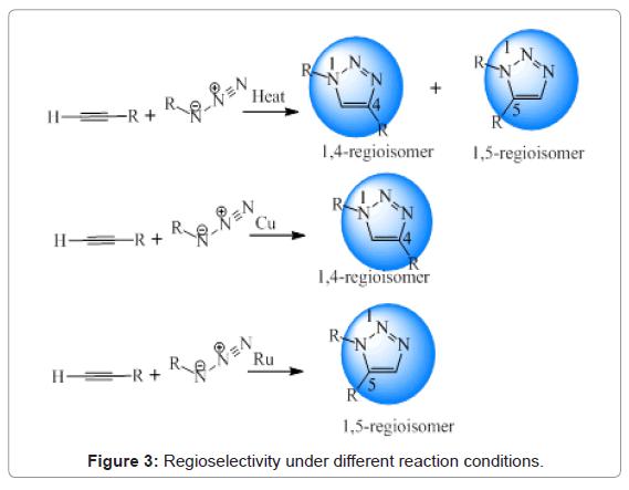 Drug-Development-Research-Regioselectivity