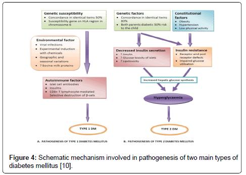 Drug-Development-Research-Schematic-mechanism-pathogenesis